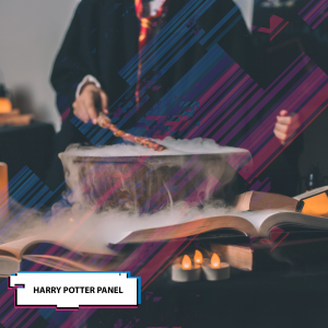 Harry-Potter-panel